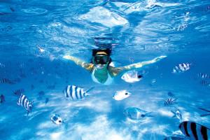 境內各家旅館都會有設置潛水教練教學,就算不諳水性也照樣能自在享受水上活動的樂趣。
