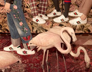 Gucci ACE 運動鞋 (3)