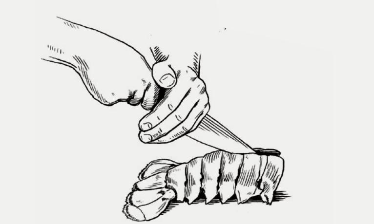 兩隻手都放在刀身上, 由上往下切開龍蝦尾。 接著移除泥腸,像處理 一般蝦肉一樣。